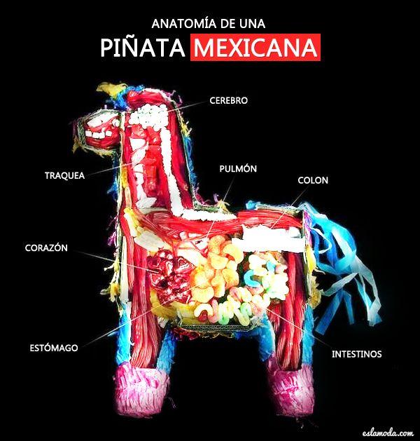 Ya se acerca el 15 de Septiembre, día de fiesta y celebración para México ya que se cumple un año más de independencia. Es común que las familias o entre amigos se hagan reuniones a las cuales tienes que ir lo más mexicano posible, y en caso de que te toque organizar la fiesta tendrás […]