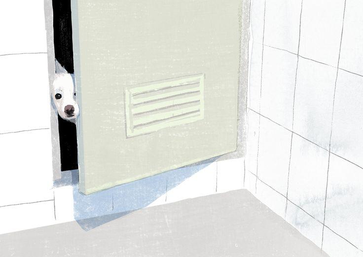 Bath Time on Behance