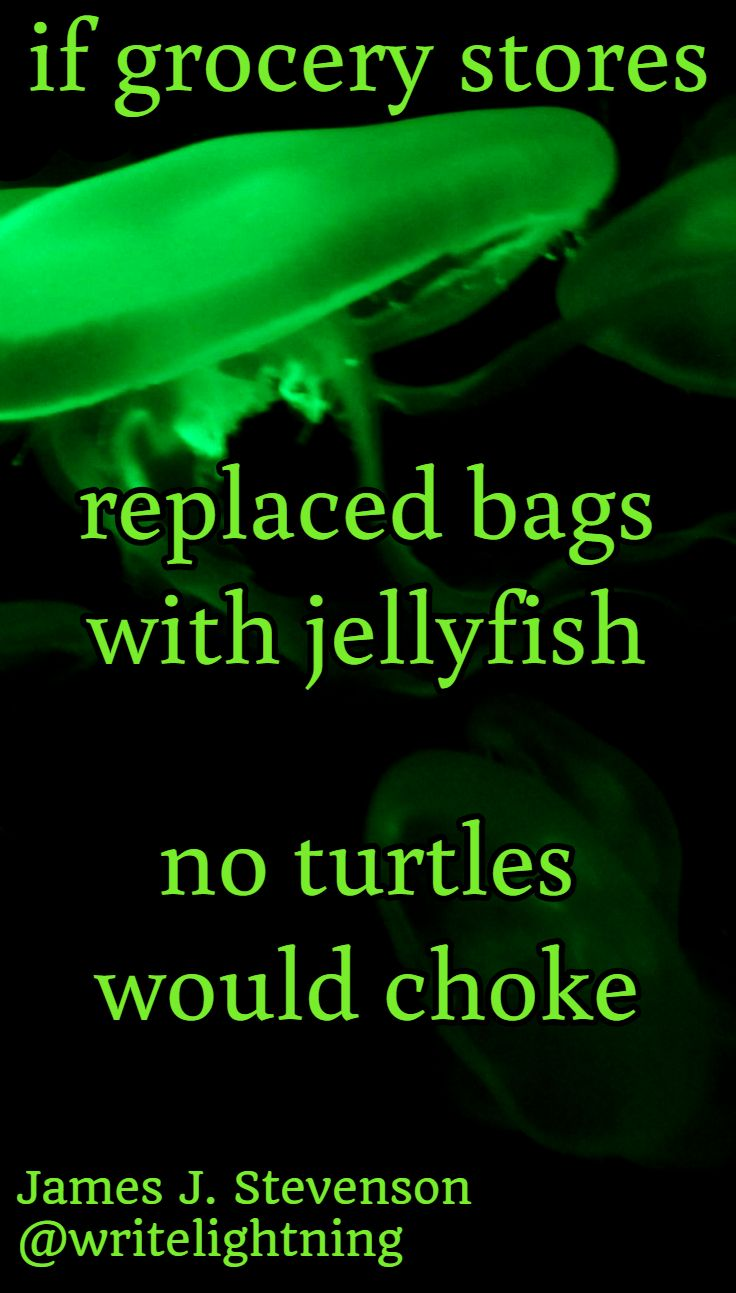 Turtles and jellyfish haiku quotes. Poetry and photo by James J. Stevenson. For more: http://writelightning.tumblr.com/ and https://twitter.com/writelightning