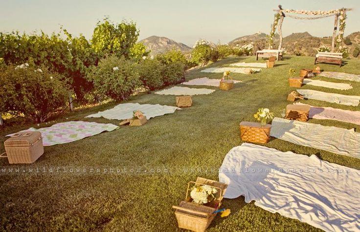 wedding picnic.