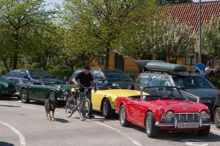 Livet på Rørvig havn med bilkøerne til Rørvig-Hundested færgen