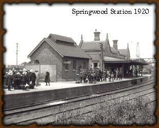 Springwood Railway Station In The Blue Mountains Of Nsw