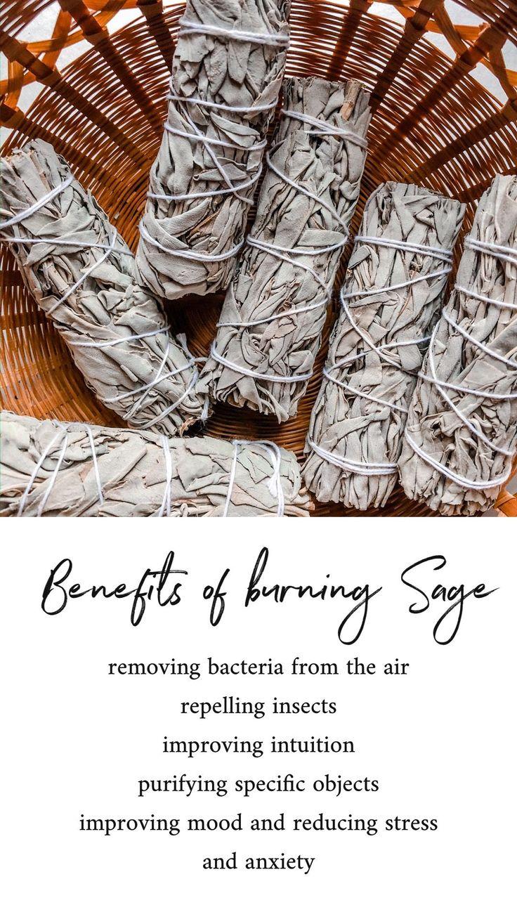 Benefits of burning sagebenefits burning sage in 2020