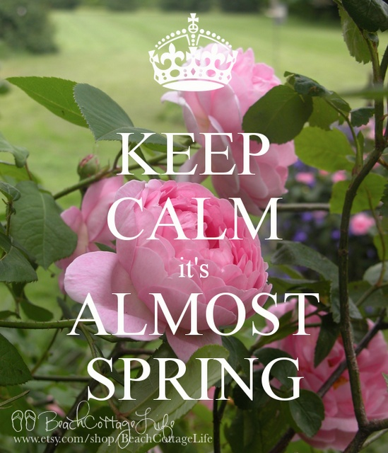 Keep Calm, it's almost SPRING! René Marie Photography | Beach Cottage Life | https://www.facebook.com/BeachCottageLifePhotography ... make your own poster at http://www.keepcalm-o-matic.co.uk/