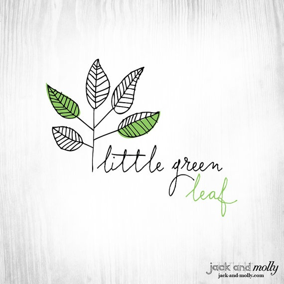 Logo Design for Little Green Leaf: by Jack and Molly