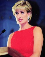 http://lovelydianaprincessofwales.tumblr.com/post/76221085535/photoset_iframe/lovelydianaprincessofwales/tumblr_n0otwkD0u91rssyvh/500/false   The many facial expressions, hairstyles & fashions of the classy Princess Diana.