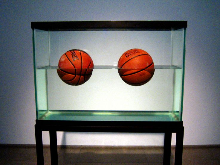I don't know what motivated this photographer to place 2 basketballs in a half empty fish tank, but the fact that I see the tank as half empty tells you what kind of person I am.