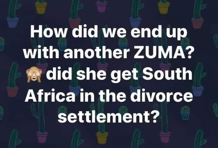 Pin By Simone Smyth On Wallpapers Memes Quotes In 2020 Memes Quotes Divorce Settlement South Africa