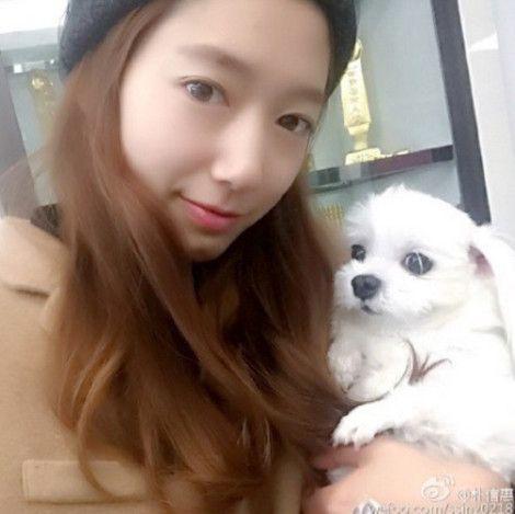 Park Shin-hye Selfie Dengan Anjing Kesayangan