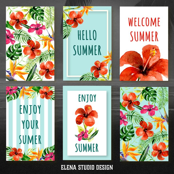 6 Watercolor Hawaiian Flower Cards