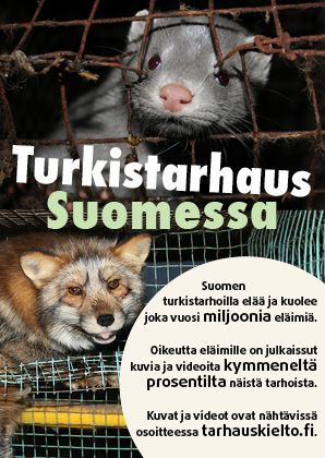 Turkistarhaus Suomessa -esite.  Voit lukea esitteen myös pdf -muodossa http://www.oikeuttaelaimille.net/sites/default/files/materiaalit/esitteet/turkistarhauslenttari_2014versio.pdf