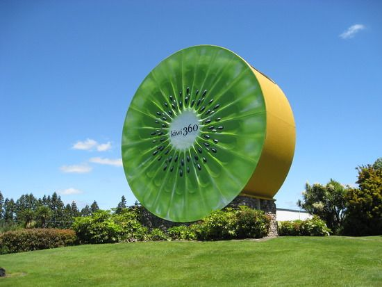 Mount Maunganui and the big Kiwi Fruit.  I have my picture taken beside this huge thing!