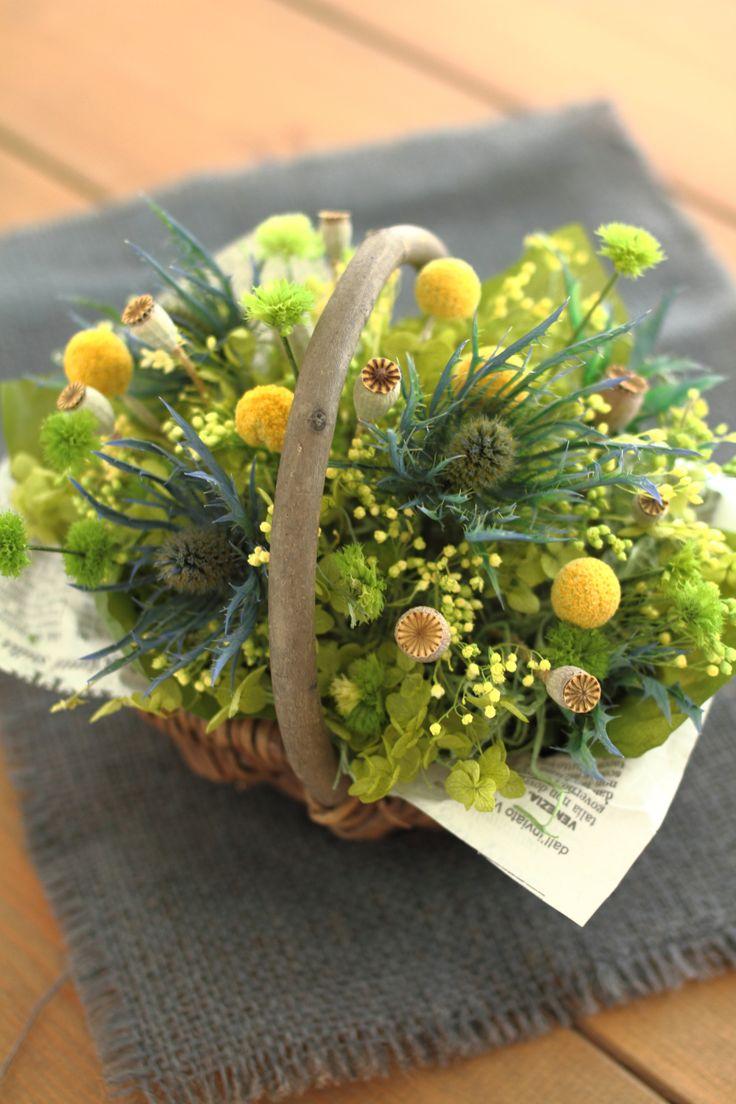 http://item.rakuten.co.jp/fine-flower/ag221/