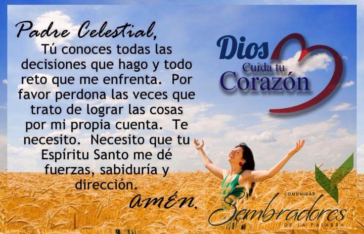 Padre Celestial, frases espirituales, #frasesdelabiblia #sembradoresdelapalabra #comunidadcatolica #comunidadsempal #rccdecolombia #rccbogota http://www.sembradoresdelapalabra.com/