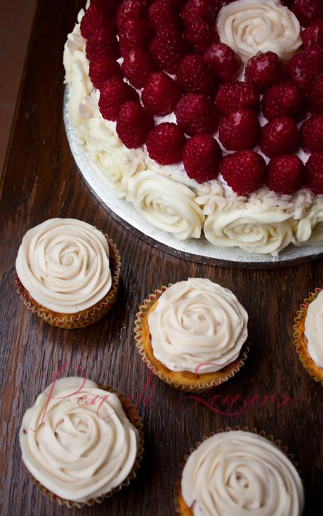 torta laurea lamponi e cioccolato bianco panna