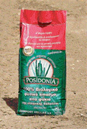 Compost Hellas.... Unique Greek Innovation To produce natural fertilizers using sea grass Posidonia oceanic (using the dead leaves that are wash up in beaches), is a unique innovation in Greece and the president (Katerina Xenopoulou) of the company has received the related Greek patent no. 1003611 (OBI). #Posidonia #Compost #Fertilizes #Organic #MadeinMyCountryGreece
