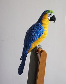 Macaw3_small2