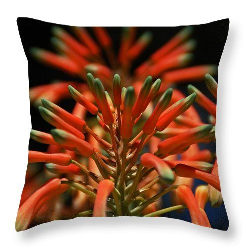 """Aloe Flower Throw Pillow for Sale by Aimee L Maher Photography and Art Visit ALMGallerydotcom. Our throw pillows are made from 100% spun polyester poplin fabric and add a stylish statement to any room. Pillows are available in sizes from 14""""x14"""" up to 26""""x26"""". Each pillow is printed on both sides (same image) and includes a concealed zipper and removable insert (if selected) for easy cleaning. Ships within 2-3 business days"""