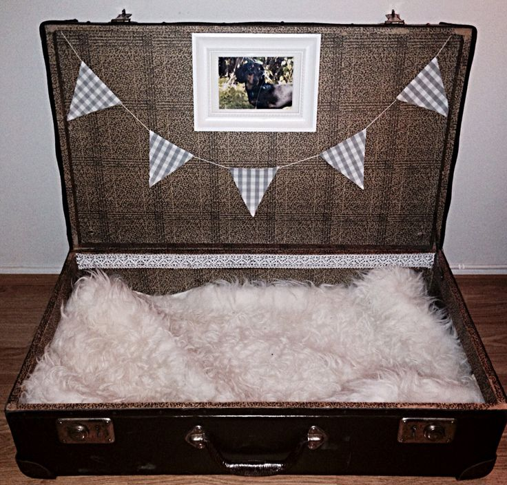 •Dog bed• made out of an old suitcase ❤️