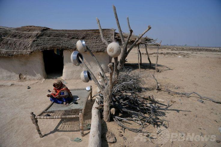 パキスタン・パンジャブ州(Punjab)のバハワルプール(Bahawalpur)地区に建設予定の太陽エネルギー公園のそばで暮らす村人(2014年2月17日撮影)。(c)AFP/Aamir QURESHI ▼28Apr2014AFP|砂漠の太陽エネルギー公園、電力危機克服の挑戦 パキスタン http://www.afpbb.com/articles/-/3013188