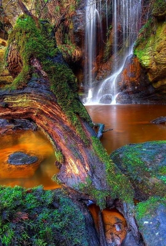 Roughting Linn Waterfall, Northumberland, England