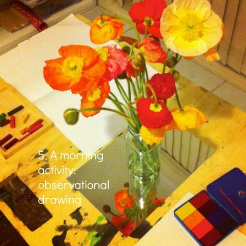 Reggio activities observational drawing poppies {An Everyday Story}