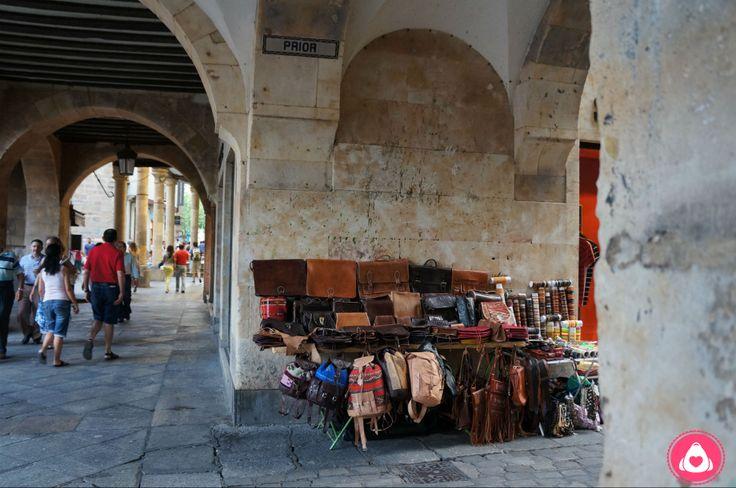 Vendimia en Salamanca