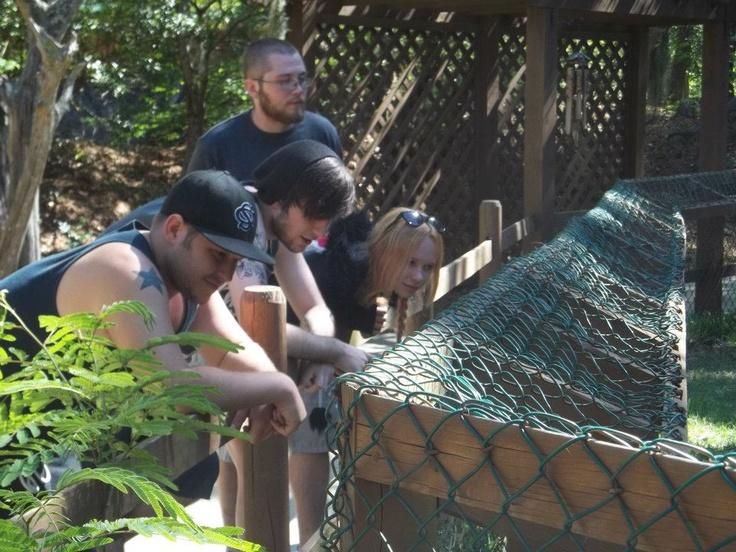 the kids at the Serpentarium!!!