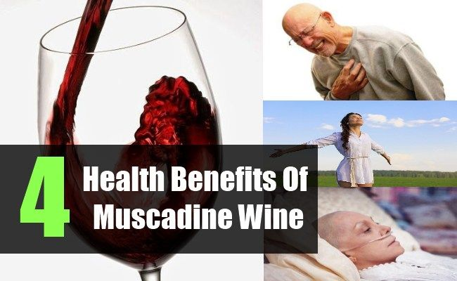 Health Benefits Of Muscadine Wine - Various Advantages Of Muscadine Wine | Vitamins eStore