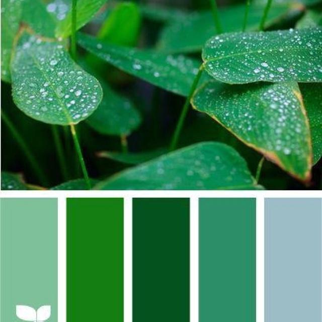 поближе цвет зеленый холодный картинки был