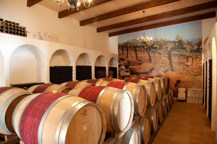 Our small intimate cellar #WineCellar #DurbanvilleWineRoute #Durbanville