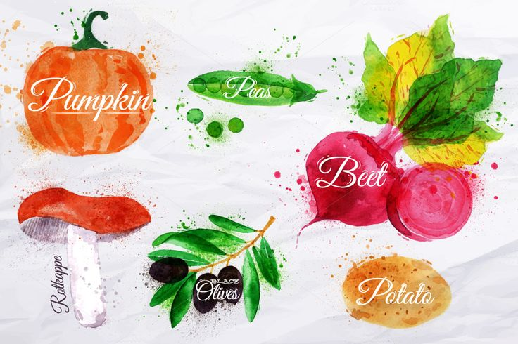 Vegetables Watercolor by Anna on Creative Market