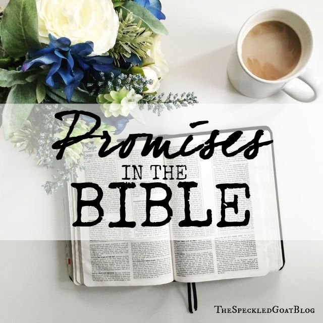 Promises in the Bible: Just because it's in there, doesn't mean it's a promise for ME.