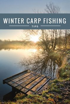 Winter carp fishing is great, there's hardly a soul on the lake and we all know the benefits of this. The downside of winter carp fishing is they are somewhat lethargic in the cold water. This can be