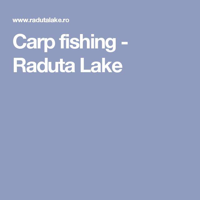 Carp fishing - Raduta Lake