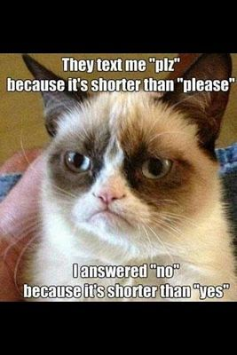 "They text me ""plz"" because it's shorter than ""please"".  I answered ""no"" because it's shorter than....../ Grumpy Cat Memes 2 