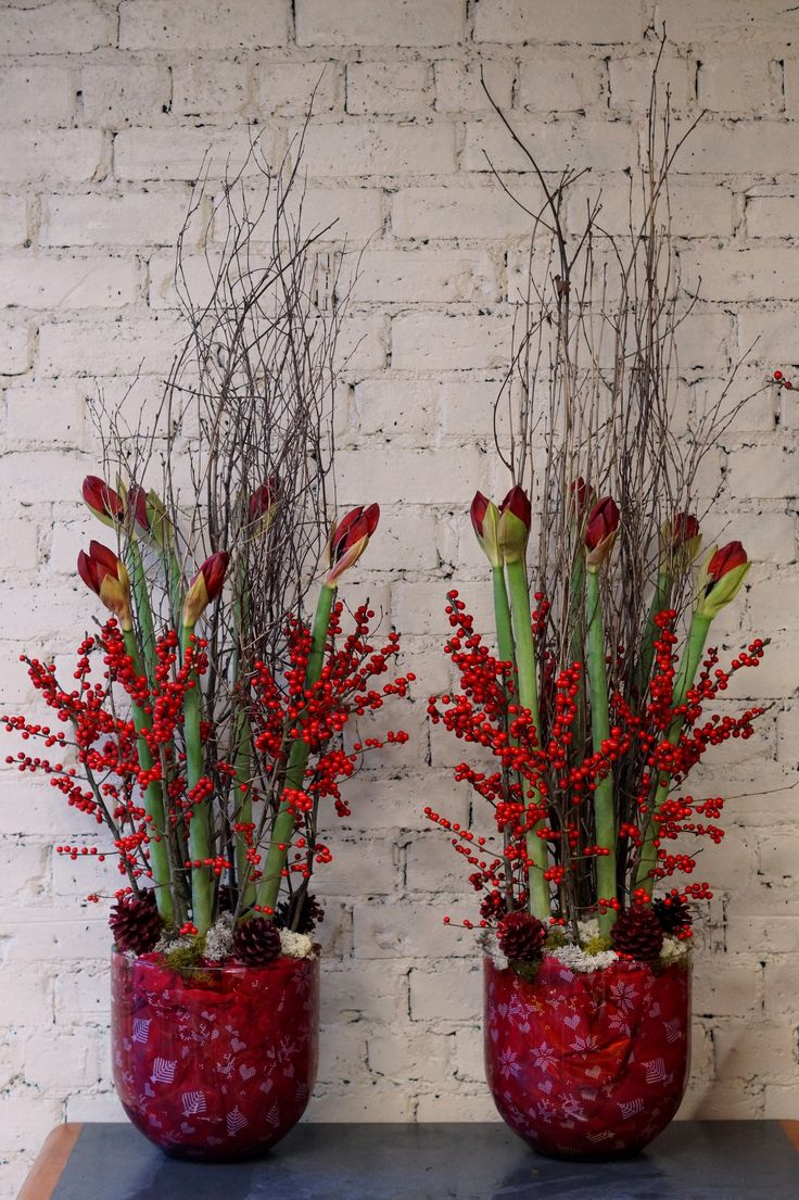 Although we've been doing a lot of Christmas decorating lately, we have still been busy sending out lots of flowers too! Here are 2 Christmas arrangements sent out to a corporate customer this morning, using red amaryllis, ilex berries, birch branches, moss and red cones. These will look even better when the amaryllis start to open! #reidsflorists #Christmas #Christmasflowers
