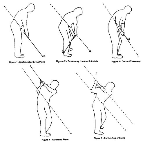 Gives Online guide to swinging