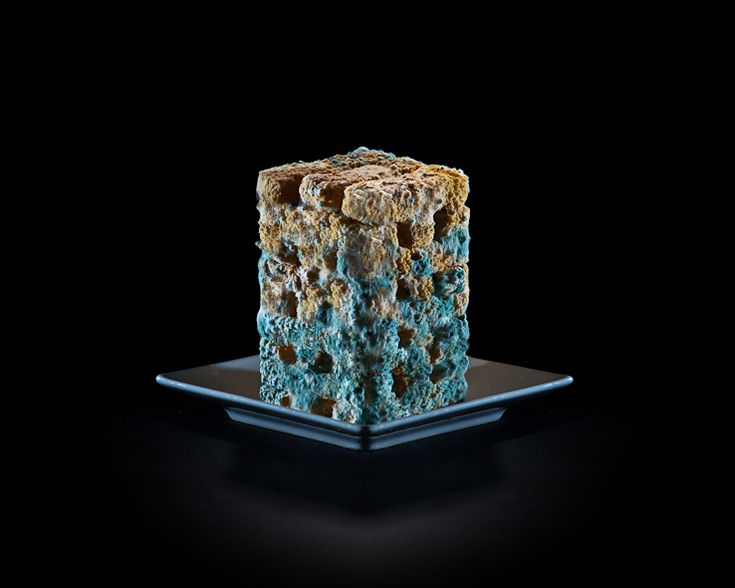 It's hard to believe something this pretty is actually rotting vegetable sticks. Check out One Third, a photographic commentary on food waste, by Klaus Pichler. Some of the photos are deceptively lovely.