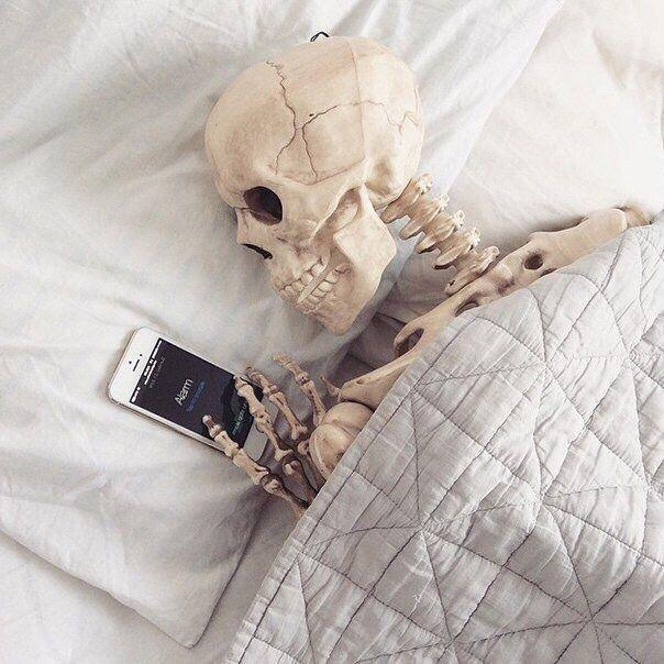 скелет он ждал картинка при планировке квартиры