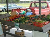 Crestview Farmers Market - Crestview, FL Thursday and Saturday 8-2