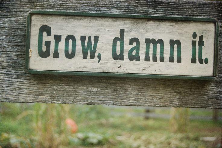 ---grow already!---