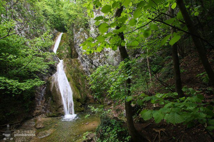 "Cascada Susara era pe lista ""de vazut"" inca de la prima tura prin Cheile Nerei, in 2012, cand am vazut traseul, dar nu am mai avut timp sa il facem. Nu stiam nici cum arata traseul ori …"