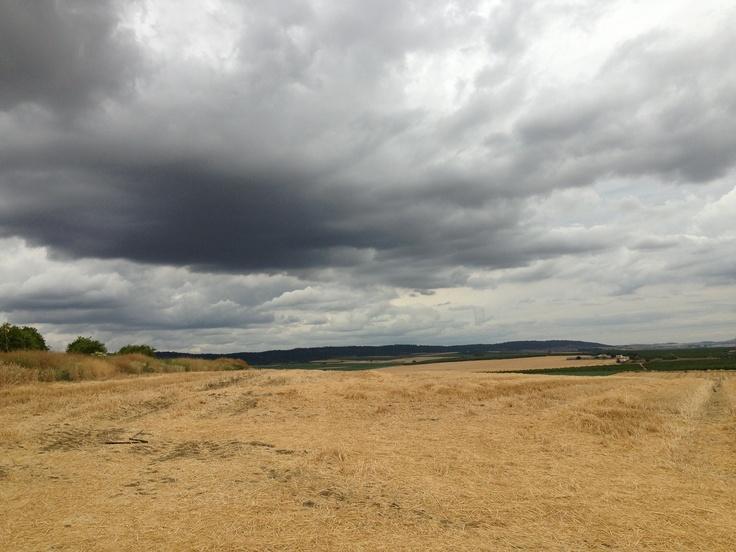 El rastrojo del trigo