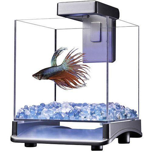 Tetra-Cubo-Aquario-Starter-Kit-Tanque-De-Luz-Led-quetta-Peixinho-Dourado-Peixes-Pequenos-0-7gal