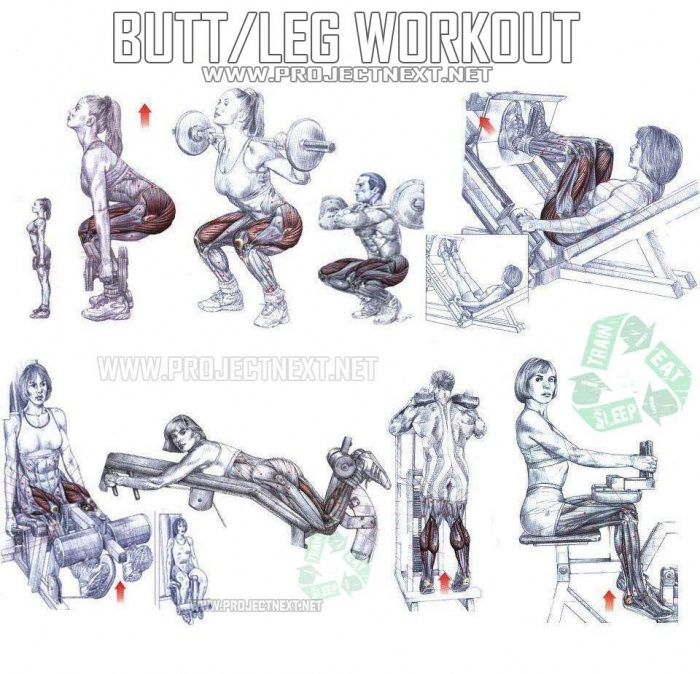 Butt Leg Workout - Healthy Fitness Exercises Gym Squat
