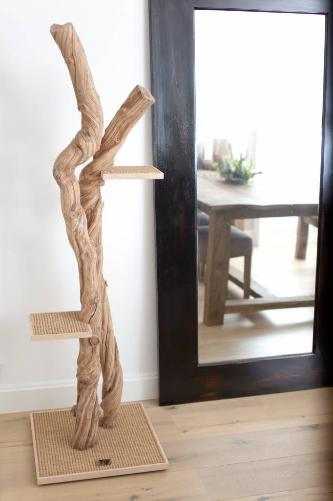 beautiful and design cat tree made with liana wood arbre chat design en liane de bois