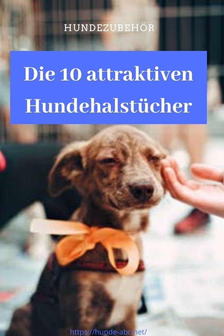 Top 10 Hundehalstucher In 2020 Hunde Hund Zubehor Hunde Bekleidung
