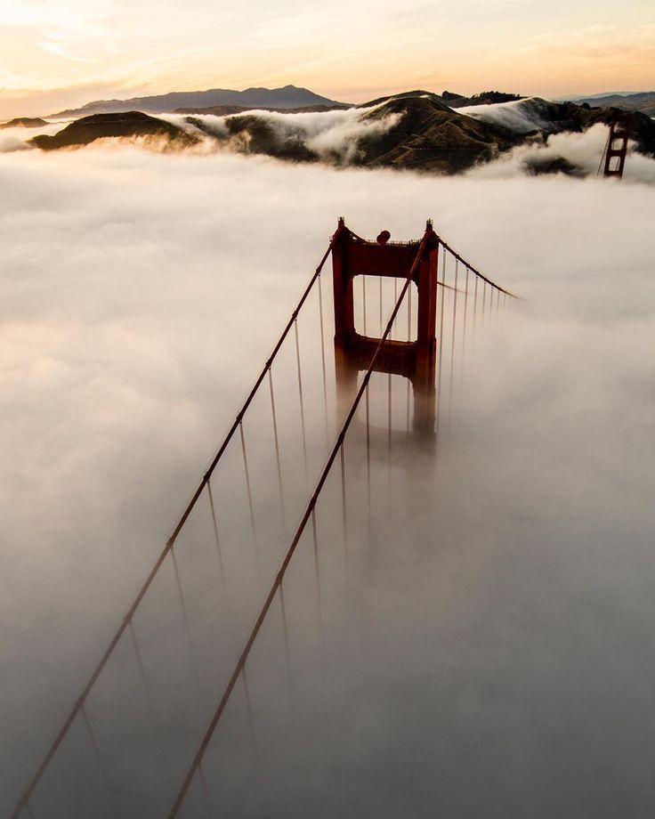 Good Morning Karl the Fog by San Francisco Feelings