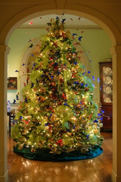 Butterflies all over the Christmas Tree ....Breathtaking..